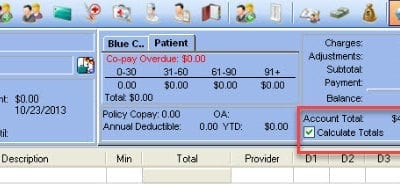 Incorrect Patient Account Total